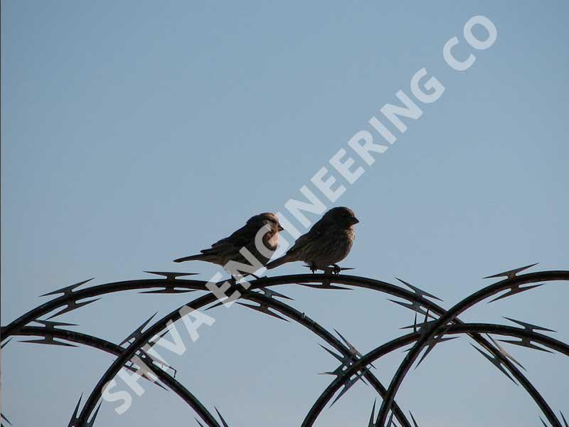 Razor wire fence manufacturer