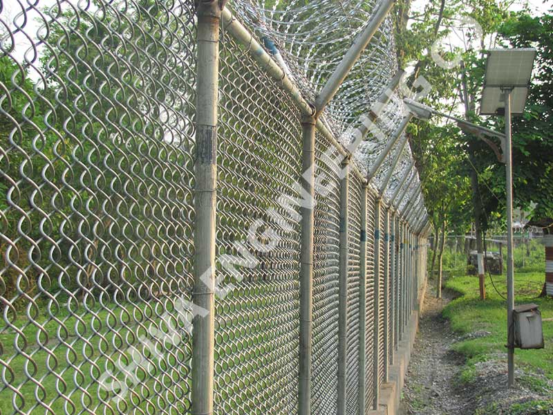 2 MTR HIGH CHAIN LINK FENCING WITH CONCERTINA COIL AT TOP